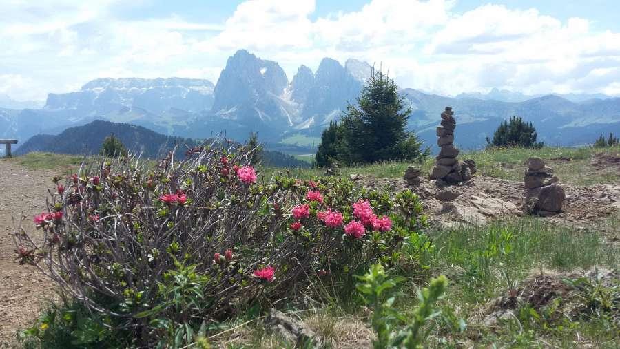Offerte convincenti - Vacanze con tutta la famiglia nelle Dolomiti ...